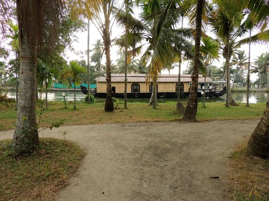 Palmgrove Lake Resort: Taken from our Premium Cottage