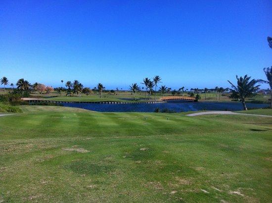 Hilton Ponce Golf & Casino Resort : Golf Course