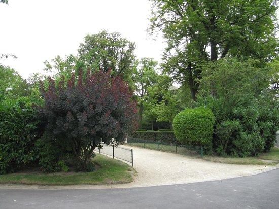 Bois de Boulogne: лес