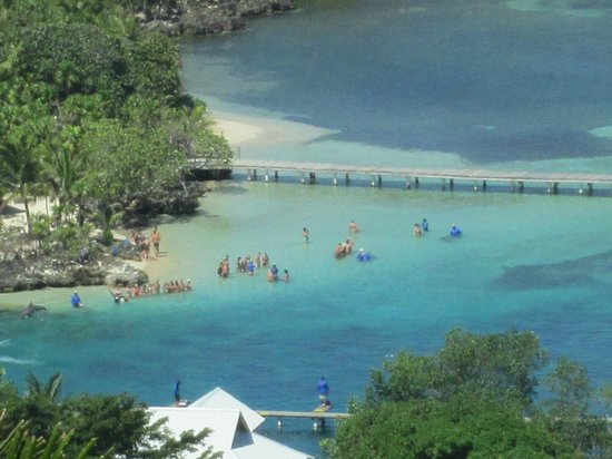 Anthony's Key Resort: Doplhin show from atop of the Carambola Gardens