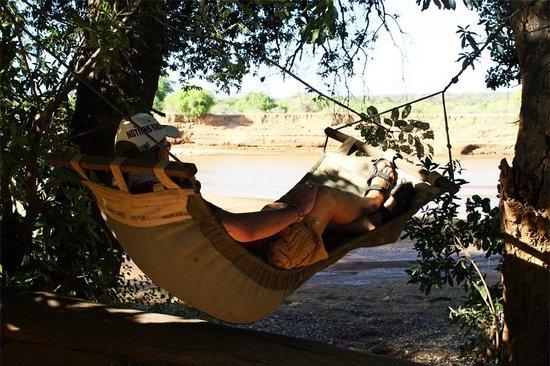 Lion King Bush Camp: View