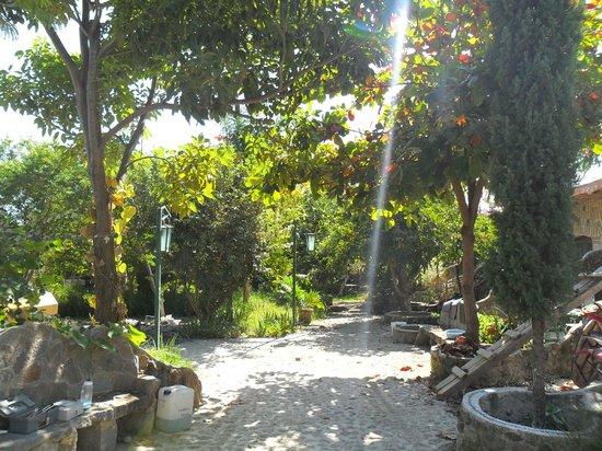 Temazcal Nahui Ollin: zona tranquila