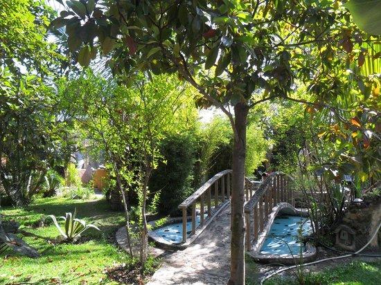 Temazcal Nahui Ollin: Jardines verdes