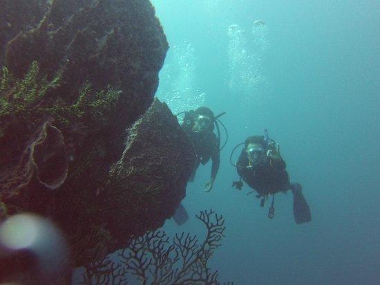 Santa Marta Dive and Adventure: open water course
