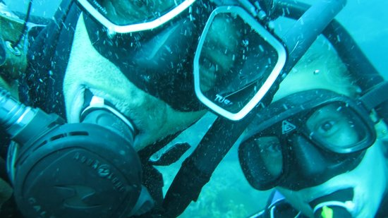 Santa Marta Dive and Adventure: fundives