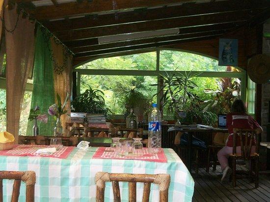 Isla Margarita : comedor con ventana al jardin
