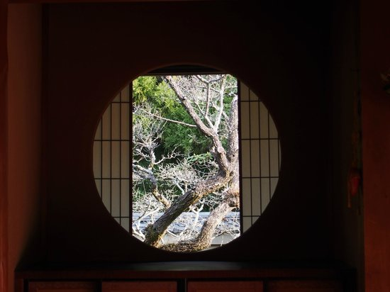 Unryuin: 手前より、紅梅、海棠、シャクナゲ。