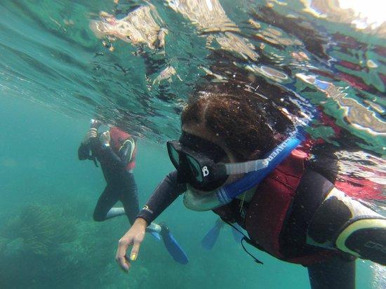 Santa Marta Dive and Adventure: snorkeling