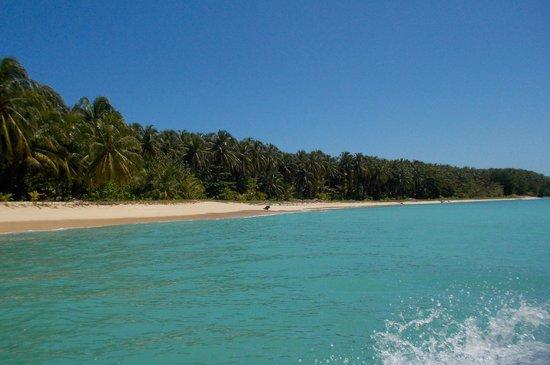 Under sea Panama: Beautiful Zapatillas