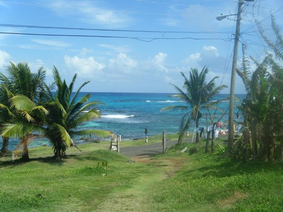 Hospedaje Los Escapados: Path down from the cabins to the beach