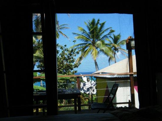 Hospedaje Los Escapados: View from the safari cabin
