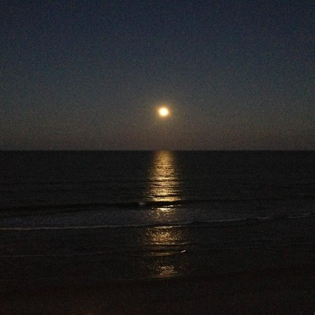 Hampton Inn Daytona Beach/Beachfront: Moon rise Feb 14, 2014