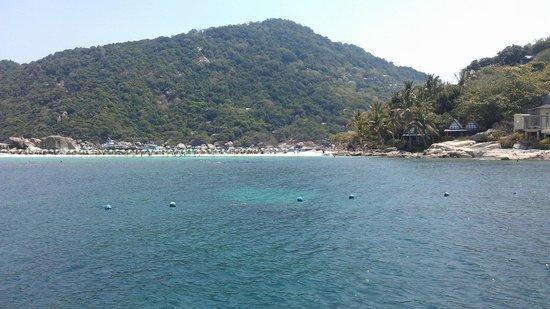 Bophut Diving School: Ko Tao