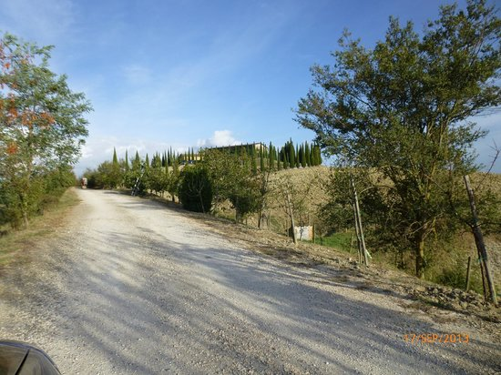 Agriturismo Bonello: the driveway/approach to the Agriturismo