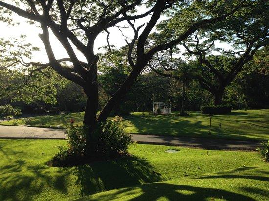 Hotel Borinquen Mountain Resort: The view