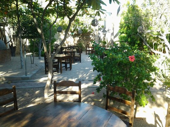 Il Rustico: outdoor dining area by day