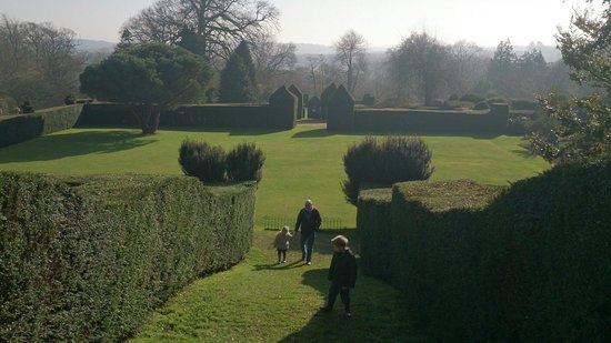 Kingston Maurward Park and Gardens: View from uptop