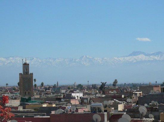 Maison de la Photographie de Marrakech : View from cafe
