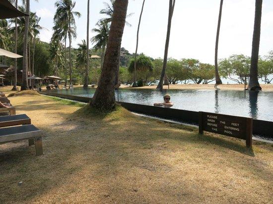 Haadtien Beach Resort : superbe piscine en pierre de lave noire