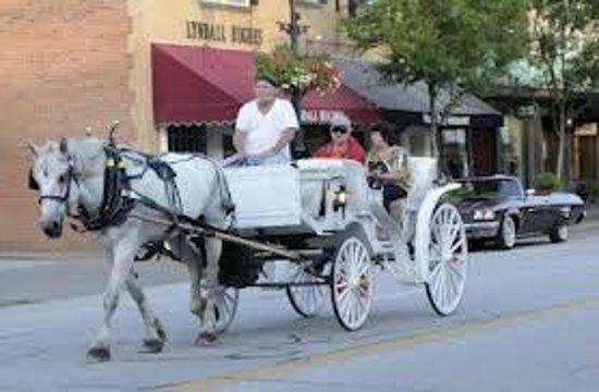 Ladybug Ranch : Ladybug Carriage Tours