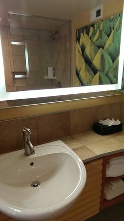 Holiday Inn North Phoenix: Bathroom again