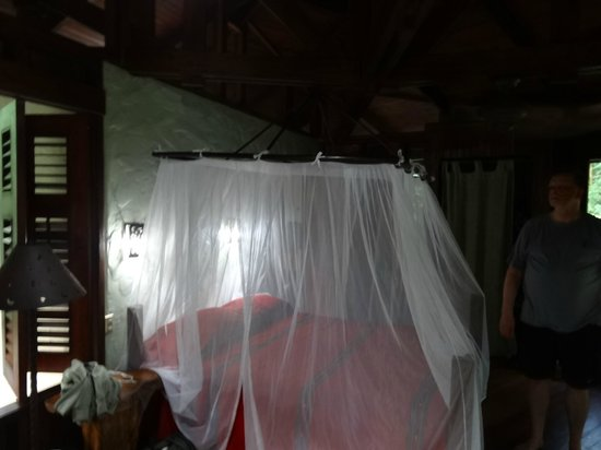 Playa Nicuesa Rainforest Lodge: Room
