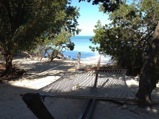Hilton Key Largo Resort: Hammock