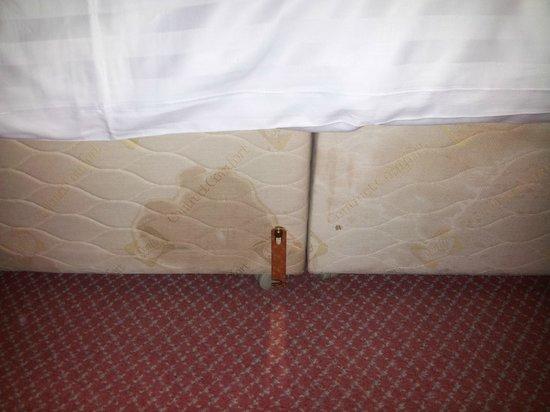 Cedar Court Hotel Huddersfield/Halifax: stained bed