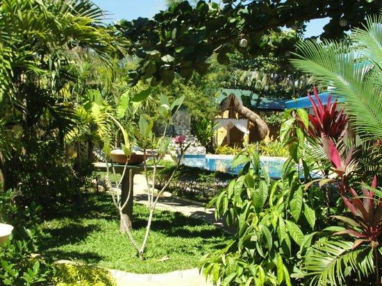 Floral Villarosa Pool : The Garden and Pool