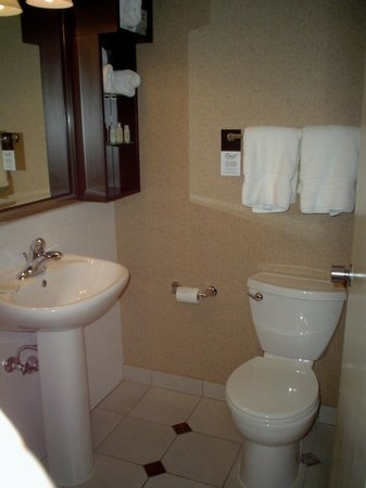 Crest Hotel: bathroom needs counters and better lighting