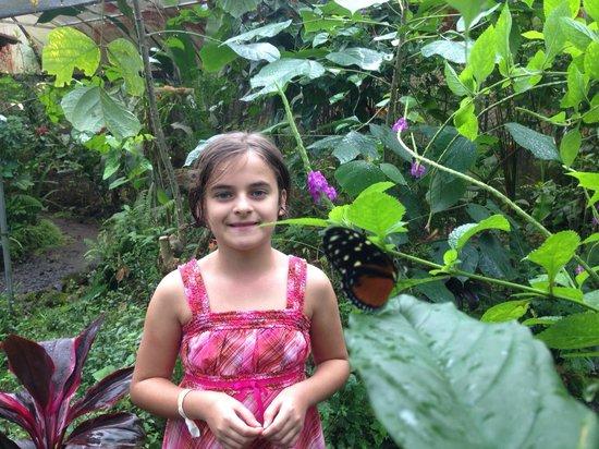 Los Lagos Hotel Spa & Resort : butterfly garden