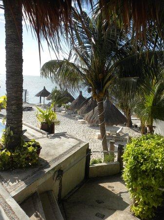 Maria's Kan-Kin: Vue de la plage depuis notre table au déjeuner