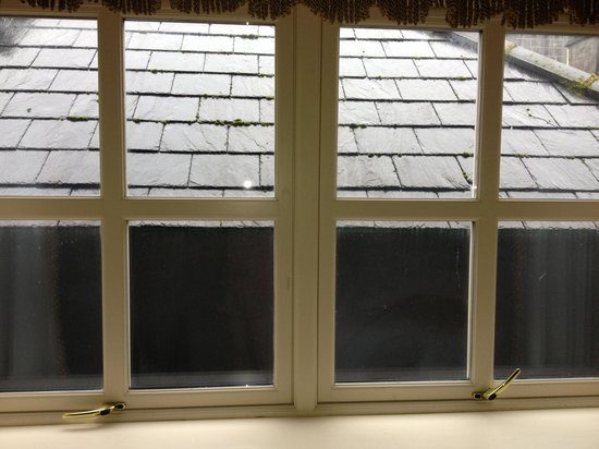 Kilronan Castle Hotel & Spa: View from window in room 223