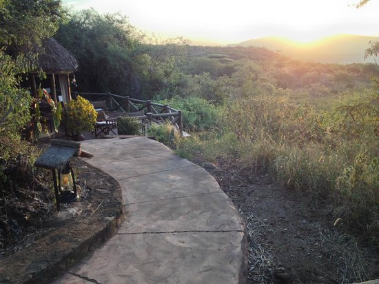 Kirurumu Manyara Lodge : Sunrise from bar area