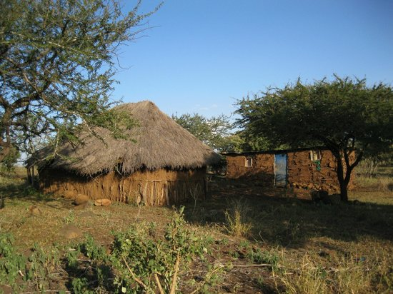Kirurumu Manyara Lodge: Abandoned Iraqw homes on hour long nature walk