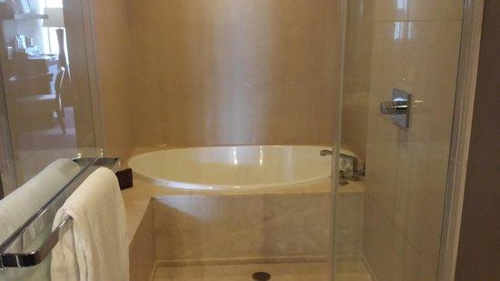 ARIA Resort & Casino : bathroom