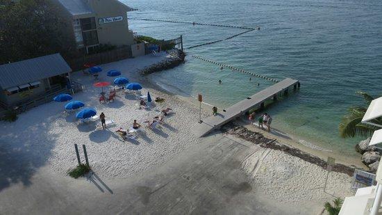 Hyatt Centric Key West Resort and Spa : prainha vista do quarto