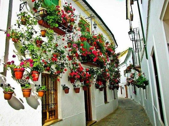 Paseos Priego - Private Tours: la villa