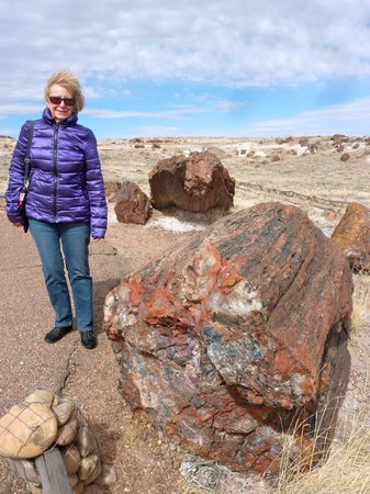 Painted Desert : Wind, rocks and beauty