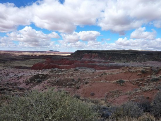 Painted Desert : One of the many canyon lands