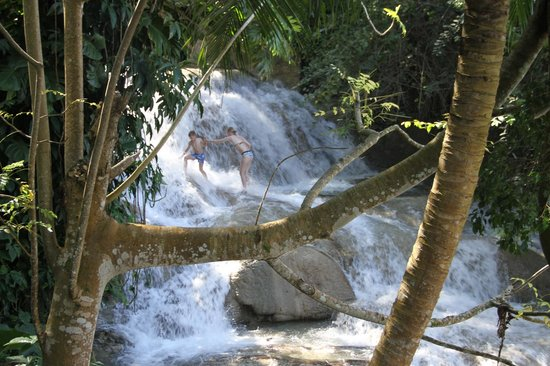 Dunn's River Falls and Park: cascades 2
