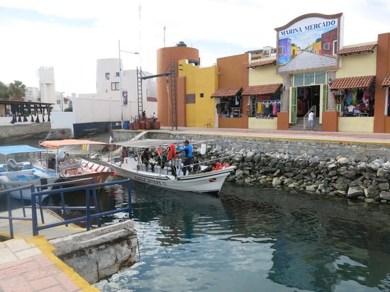 Aqua Activities Los Cabos: The Dive Boat at the Marina