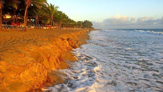 Viva Wyndham Tangerine : Sunrise on the beach