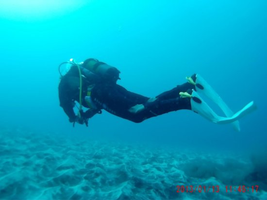 Espiritu De Buceo Padi 5 Star Dive Centre: los Gigantes