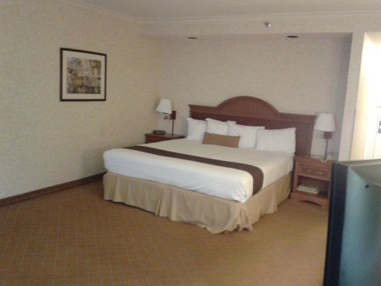 Camarillo Executive Inn & Suites: King size bed