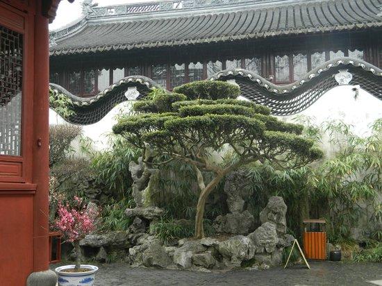 Shanghai, Kina: Jardin du mandarin Liu