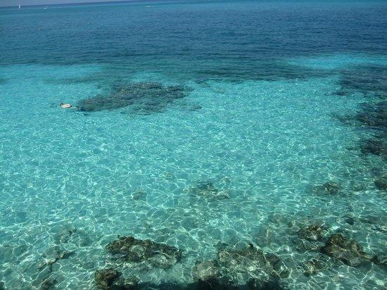 Paradisus Rio de Oro Resort & Spa : Snorkeling
