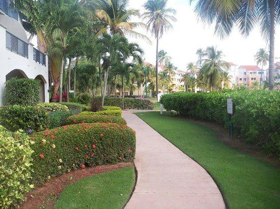 Wyndham Garden at Palmas del Mar : Wyndham garden palmas del mar