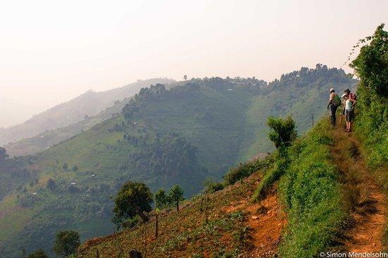 Nkuringo Bwindi Gorilla Lodge: Hike to Bwindi Impenetrable Forest