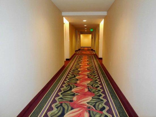 Harrah's Resort Southern California : Hallway